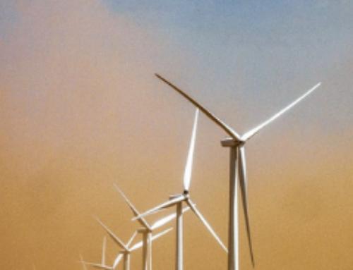 Nachhaltigkeit im Online-Handel: Wie Anbieter auf das steigende Umweltbewusstsein reagieren